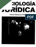 Sociología Juridíca, Rafael Marquez Piñedo