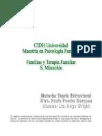 Ensayo de Familias y Terapia Familiar de Minuchin