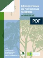 Manual Del Eucalipto