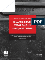 Islamic State Weapons in Iraq & Syria