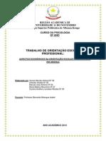 Aspectos Económicos Da Orientação Escolar e Profissional Em Angola