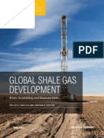 Shale Gas Report