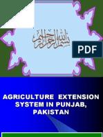 Agri. Extension System in Punjab