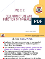 2.1. Cell Structure and Function of Organelles