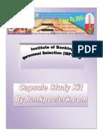 IBPS PO Capsule Study Kit