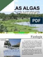 2014 Ficología en Paraguay
