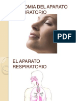 aparatorespiratorioanatomia-111026202842-phpapp01