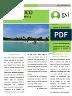 Boletín GVI Mexico Enero-marzo 2014