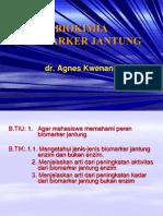 +Biokimia Biomarker Jantung