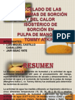 MODELADO DE LAS ISOTERMAS DE SORCIÓN.pptx