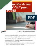 Adopcion Ven-nif Para Pyme251011