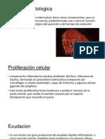 Tuberculosis fisiopatologia