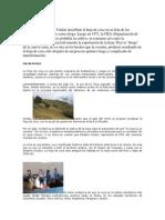 La Hoja de Coca en Bolivia