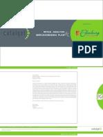 Retail Analysis & Merchandising Plan