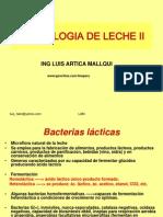 Bacterias Lacticas 2010