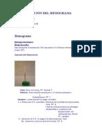 Interpretación del hemograma