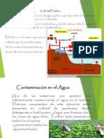Ciclo Del Fosforo, Contaminacion Del Agua y Contaminacion en El Aire