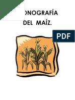Monografia Del Maiz