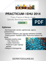 Practicum I EHU 2014