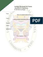 Biocatálisis Enzimática(Preinforme) - Copia