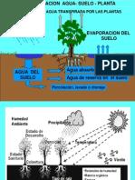Relacion Agua Suelo Planta 2008