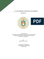 Mi Troca y Yo Masculinidades y Migracion en Chalchihuites (1)