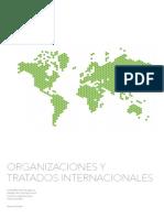 Resumen Tratados y Organizaciones Internacionales