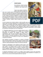Animales Sedentarios 3 Pags.docx