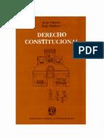 derechoconstitucional-111008102331-phpapp02