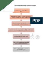 protocolo NMP Bioqui 2.docx