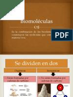 Biomol閏ulas