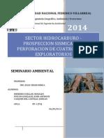 Sector Hidrocarburo-proceso de Exploracion