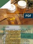 Cuidados Para La Conservaciòn de La Cerveza