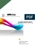 Aspen Plus Report