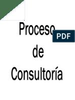 DO - 11 Proceso de Consultoria AAS