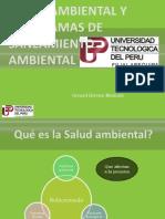 Saneamiento Ambiental Gerard LL.
