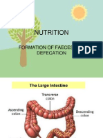 Faeces and Defecation