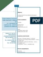Cesar Gonzalez Aguilar Curriculum