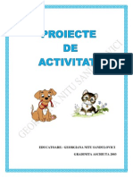 proiect didactic educarea limbajului