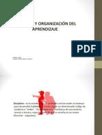 Disciplina y Organizacion