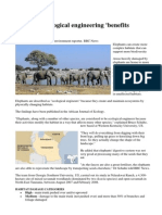 Elephants - Ecological Engineers