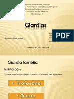 Giardia s