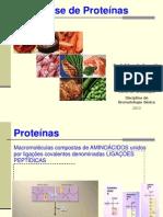 Análise de Proteínas 2013