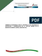 9.2.2 TDR Proteccion de La Tortuga Marina