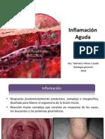 CLASE 15 - Inflamacion Aguda 1 (1)