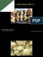 Huong Vi Que Huong (Phan 3) Xuan Dat Khach (Vc)