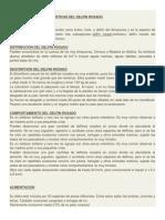 Información y Características Del Delfin Rosado