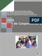 Anexos Manual Final Cooperativas Junio29...Corregida