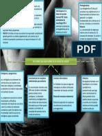 FACTORES DESENCADENANTES DEL TRABAJO DE PARTO.pptx