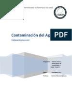 088 Informe #1 - Calidad Ambiental